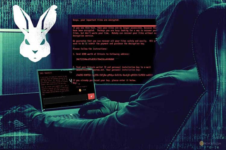 В Украине и России началась новая волна кибератак, Bad Rabbit: хакеры вымогают 0,05 BTC