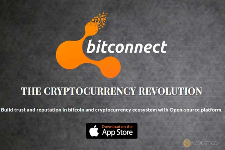 Инвесторы BitConnect в панике, поскольку цены на BCC упали на 90% и продолжают снижаться