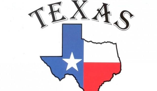 Штат Техас запрещает коммерческую деятельность BitConnect