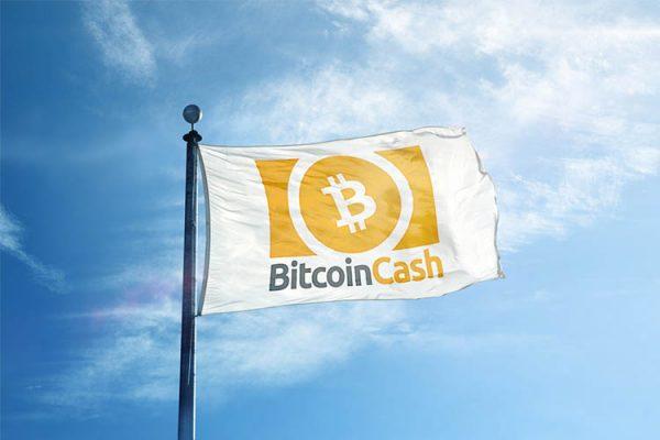 Bitcoin.com обвиняется в заблуждении людей покупать Bitcoin Cash